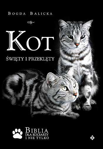 Kot święty i przeklęty - Okładka książki
